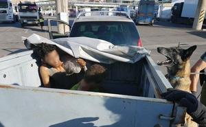 Detienen a 76 polizones en el puerto de Almería durante la OPE