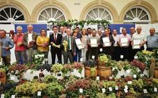 Doce mil plantas de variedades de uva de mesa, 'a salvo' en la provincia