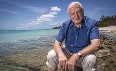 Attenborough pide a la BBC más cultura