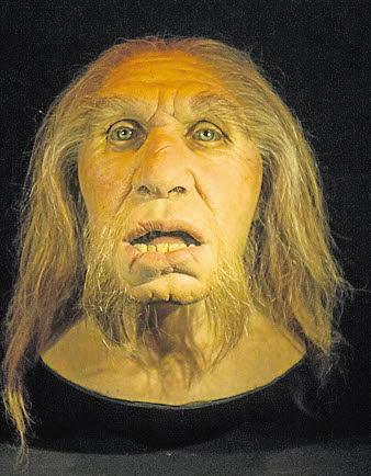Los humanos modernos heredaron las defensas virales de los neandertales