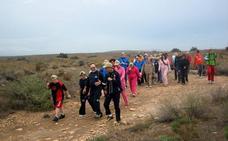 Las Amoladeras de Cabo de Gata, elegido para su estudio en un encuentro sobre centros de visitantes