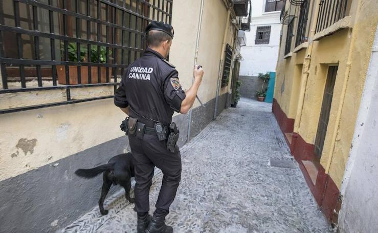 La Policía Local de Granada en una redada contra el menudeo de drogas en la calle Elvira