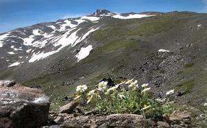 Sierra Nevada ante el reto del cambio global