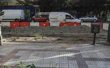 Restos de los árboles que han sido retirados por las obras