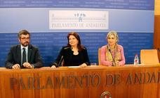 El PP-A ve «posibilidades» de gobernar ante la «baraja» de opciones en el Parlamento