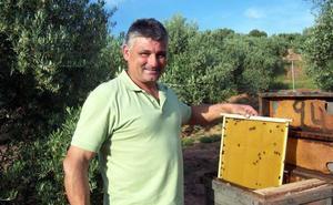 Más de 1.200 apicultores de Andalucía reciben ayudas del Programa Apícola Nacional