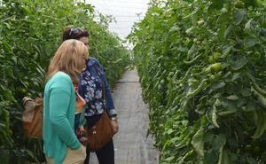 Un impulso en el sector agrario al Registro de Titularidad Compartida