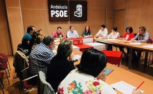 El PSOE de Granada constituye el Comité de Campaña para las autonómicas del 2-D, que coordinará Álex Casares