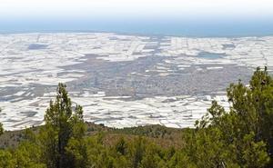Almería necesita 237Hm3 para asegurar su industria agrícola