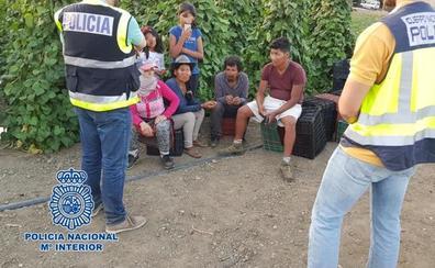 Localizan un menor de 14 años trabajando en una explotación agrícola de Granada