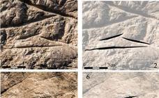Descubren en Píñar un nuevo yacimiento con arte rupestre