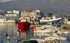Cinco mujeres impulsan proyectos para modernizar el sector pesquero