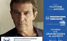 UGR Solidaria llama a la participación en la Gran Recogida para el Banco de Alimentos de Granada