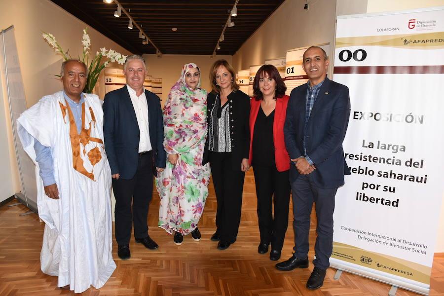 La Diputación de Granada dedica una jornada de sensibilización al conflicto del Sahara Occidental