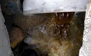 Seprona investiga vertidos al mar de la fábrica biodiésel de Carboneras