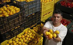 Trabajadores pobres de España: «No salimos de la penuria»