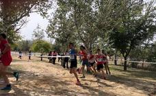 800 atletas participan en la primera cita del Circuito Provincial de Campo a Través en Jaén