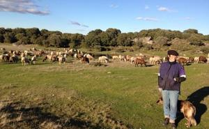 Coag pide que se compatibilice la actividad ganadera y la caza