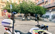 Multada una persona por coger limones de la plaza Cervantes de Jaén