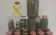 Detenidos cuatro jóvenes de Los Villares por cultivar y traficar con marihuana