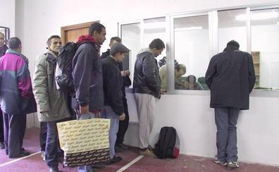 El Foro de la Inmigración de Jaén insiste en que no hacen falta temporeros para la aceituna
