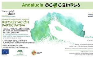 La UJA organiza el sábado una reforestación junto al castillo de Santa Catalina