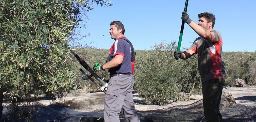 Los parados 'fantasma' de Jaén