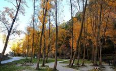 Los bosques y zonas naturales de Granada que no debes perderte