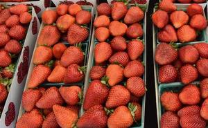 Detienen a una mujer por poner agujas en las fresas de los supermercados de Australia