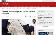 El cachorro adoptado por la Policía Local de Granada traspasa fronteras y llega a la BBC inglesa