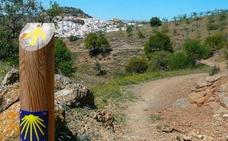5 rutas cicloturistas para disfrutar de Granada en bicicleta