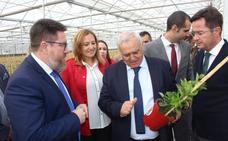 El sector de la planta ornamental de Almería incrementa un 36% sus exportaciones
