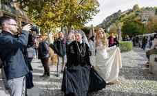 Día del Patrimonio en Internacional en Granada