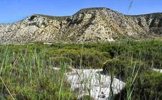 El cambio climático aumentará hasta 23 las olas de calor en Jaén a final de siglo