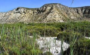 El cambio climático aumentará hasta 75 las olas de calor en Almería a final de siglo