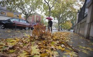 La Policía Local alerta del peligro de las hojas mojadas: «Granada está llena, mucho cuidado»