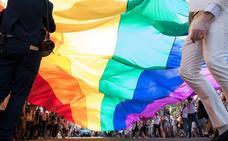 Condenados dos menores por agredir a otro por ser homosexual