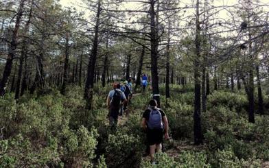 Tahal, un paseo entre almendros para respirar tranquilidad