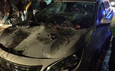 Ilesos una mujer y tres niños tras caer un árbol sobre su coche cuando circulaba por Jete