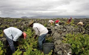 Dos de cada tres trabajadores migrantes están en países de ingresos altos