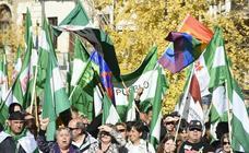 Setecientas personas recorren el centro de Granada por el 4D