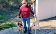 Multa por dejar a sus dos perros sueltos en Puente Tablas en Jaén capital