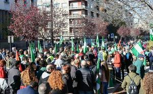Cientos de personas recorren el centro de Granada para reivindicar la soberanía de Andalucía