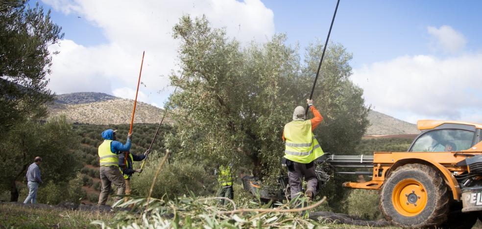 Casi la mitad de asalariados de Granada no ganan más de 825 euros