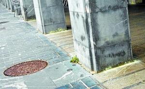 La Policía advierte: el azufre es nocivo y no evita que los perros orinen