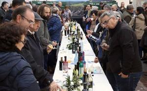 Casi 70 aceites de oliva virgen extra aspiran a formar parte de los Jaén Selección 2019