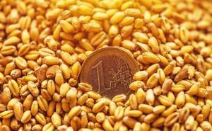 La renta agraria crece en Jaén un 8%, un punto más que la media andaluza