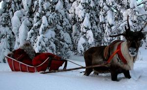 3 actividades navideñas que encantarán a tus hijos