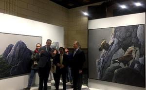 Exposición del artista holandés Alwin van der Linde, en Arjona