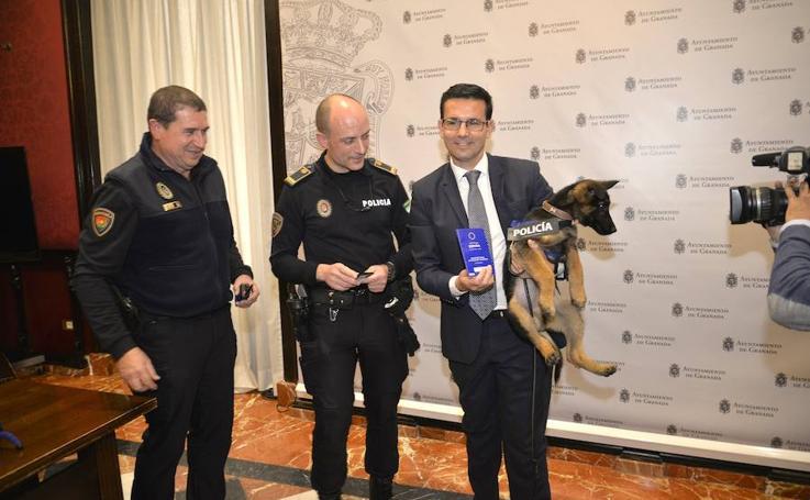 Stan Lee ya es miembro de la Policía Local de Granada